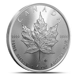 Tuba zawierająca 25 sztuk 1-uncjowych monet o nominale 5$ MAPLE LEAF wydanych w Kanadzie w 2021 roku. Monety w stanie menniczym.