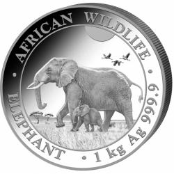 Słoń 2022 - moneta 1 kg srebra